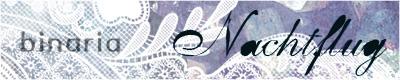 banner_nacht_l.jpg